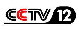 CCTV社会与法频道《律师来了》栏目常年法律嘉宾